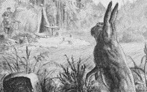 1 art :wiki:Die_Gartenlaube_(1878)_b_687