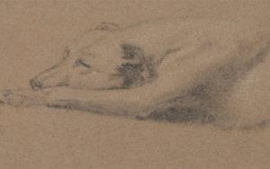 21 art wiki co:James_Ward_-_Study_of_a_Sleeping_Dog_-_Google_Art_Project