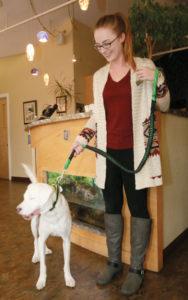 Jasper Animal Hospital employee Brittany Puckett with her dog Zero.