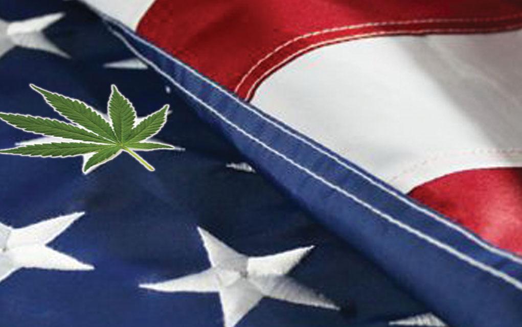 veteran access to cannabis