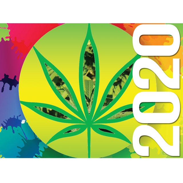 how many states have recreational marijuanas 2020